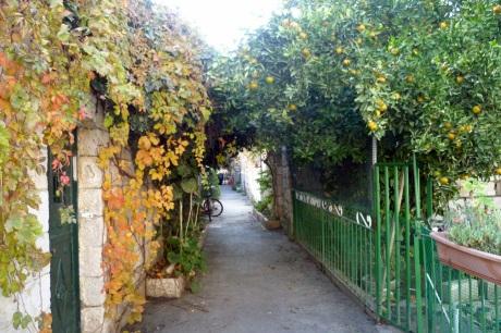 Miriam Safira Nahalot Alley